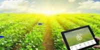 رونمایی از سامانه رصد هوشمند تغییر کاربری زمین های کشاورزی